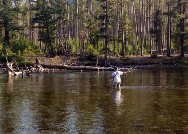 fly fishing, yellowstone national park, fly fishing yellowstone, scott mathson, mark mathson, scott, enter adventure, montana, outdoors, exploring, adventure